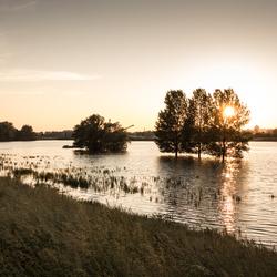 IJssel - Hoogwater