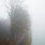 Kanaal in de mist