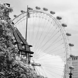 Londen_eye.jpg