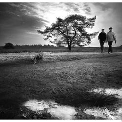 'aan de wandel'