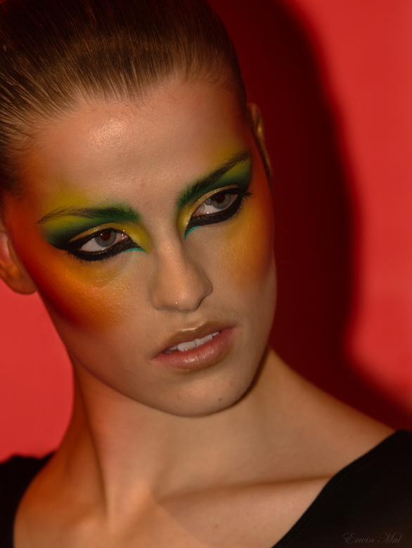 Make-up - Canon model<br /> ZE 2010