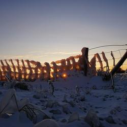 Opgaande zon schijnt door bevroren hek