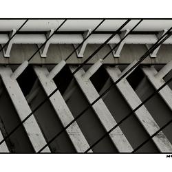 Calatrava 9 -Full Color Too