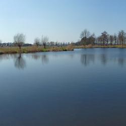 Panorama van de visvijver