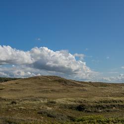 Panorama Helderse Duinen - zomers