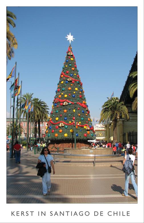 Kerst- en palmbomen - Deze enorme kerstboom in een winkelstraat met palmbomen deed voor mij heel vreemd aan. Bij dit soort zomers weer denk je helemaa