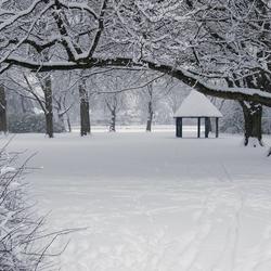 Wilhelminapark Donderdag 17-12-09