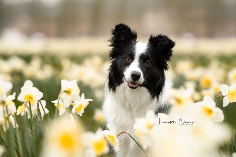 Jane  - I'm ready for spring