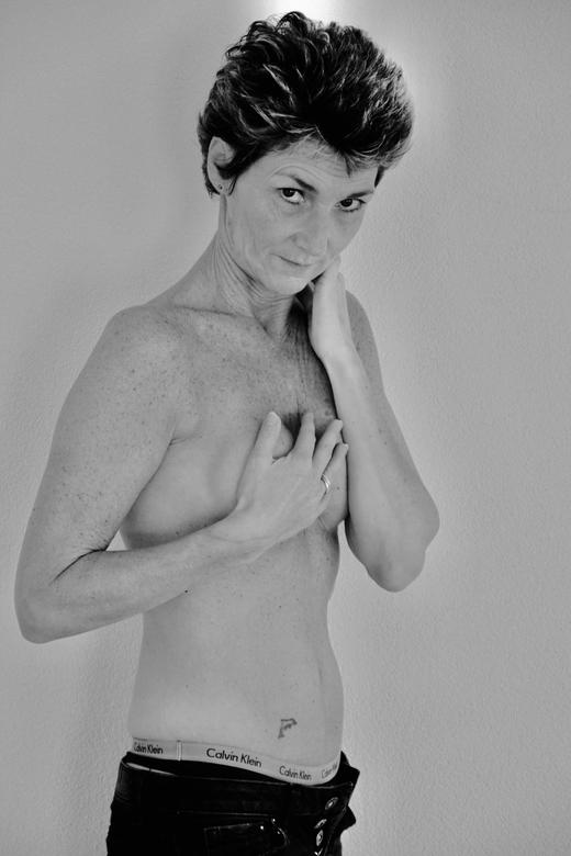 Lady D'arbanville Cat Stevens -