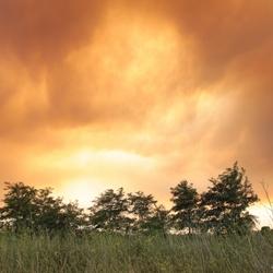 Bosbrand grens Spanje-Frankrijk