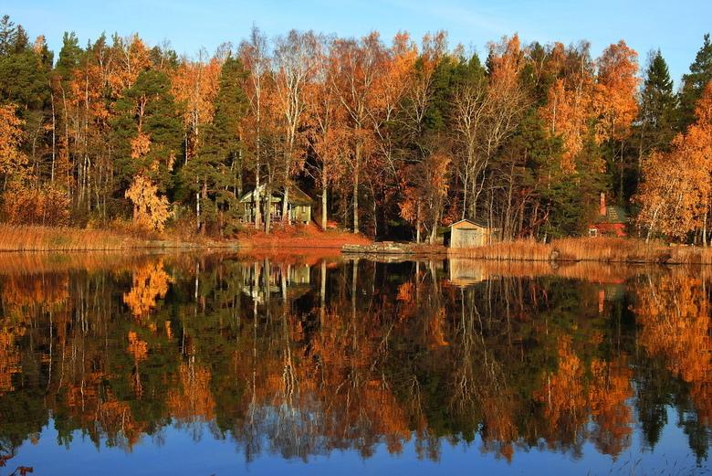 herfst kleuren - het is deze herfst toch echt genieten met die mooie kleuren en best ook lang  en gelukkig mooi weer voor het licht  is ook zeker niet