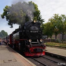 HSB Wernigrode-Westerntor