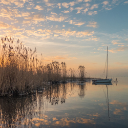 Boat at Lake Veluwe