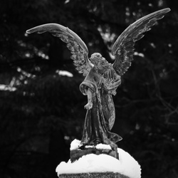 Goodbye Angel...