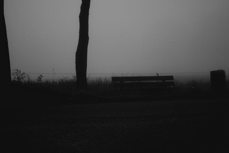 foggy morning - bench