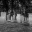 Joodse graven