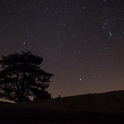 aekingerzand onder de sterren