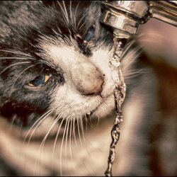 Don't Touch My Water..