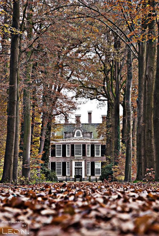 oprijlaan kasteel in de herfst - De bomen van de oprijlaan van een kasteel in Vorden hebben herfstkleuren.