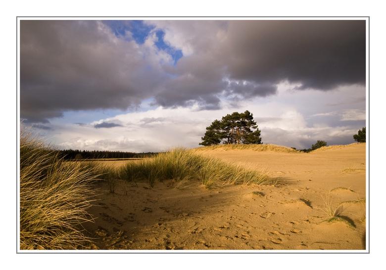 zon, zand, wind en wolken 2 -