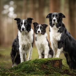 Max, Hope & Kyle