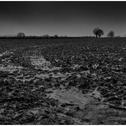 Limburg - de natte versie
