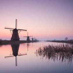 Kinderdijk this morning