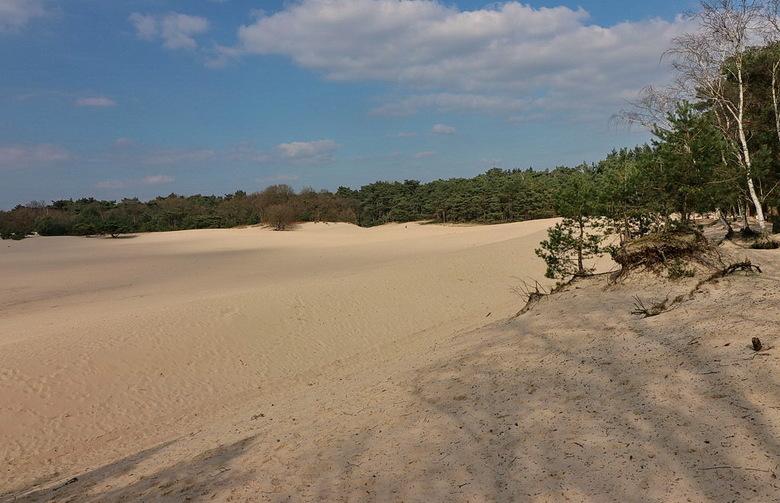 Soester Duinen - is een heerlijk gebied om te wandelen met veel naaldbomen om het duin heen. <br /> Met wat geluk kan men daar ransuilen spotte<br />