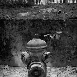 ardennen1280.jpg