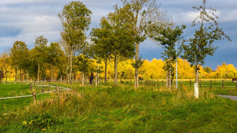 Herfst en donkere wolken boven de Eems Dollard. - Kleuren pracht.