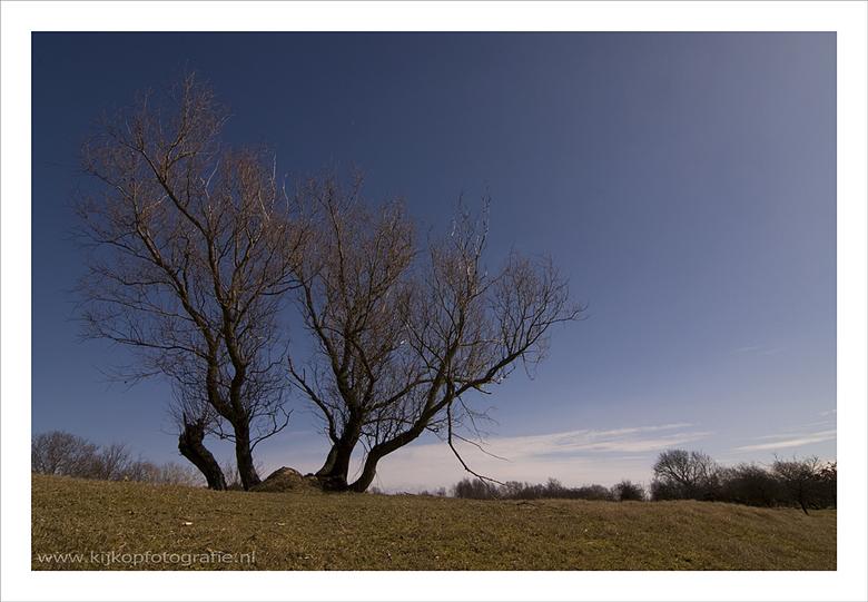 """Kijk Op AWD - Hallo allemaal,<br /> <br /> Ter voorbereiding voor de Workshop &quot;Natuur- en Landschapsfotografie&quot; in de <a href=""""http://www."""