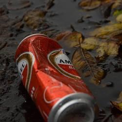 Bier en herfst