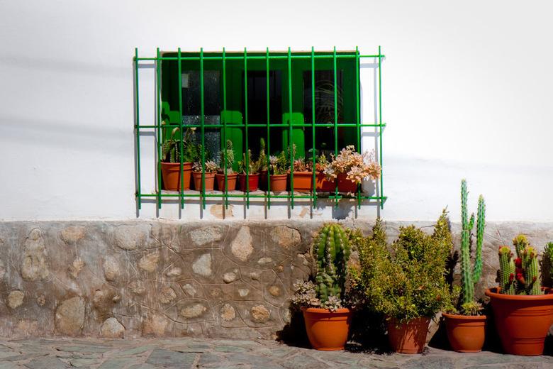 Casa Cactus - Huis in Cachi, in het noordwesten van Argentinië.