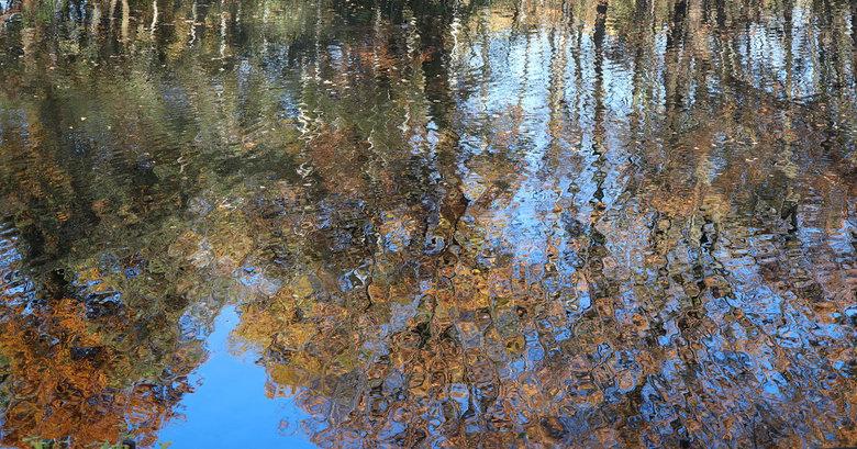 Autumn Reflections - Bedankt voor jullie reacties op mijn vorige upload.