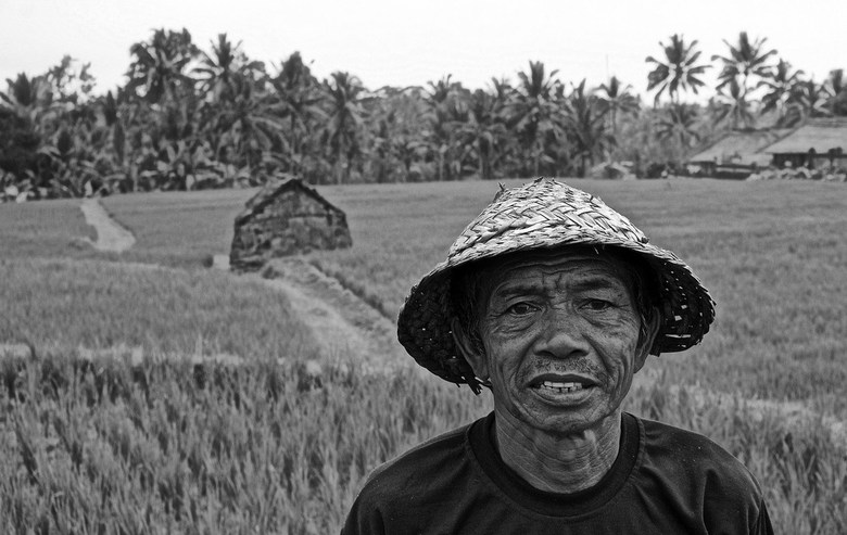 Bali farmer. - Bali.