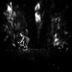 in het bos verdwaald