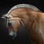 Horse 012
