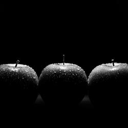 Black and white still life