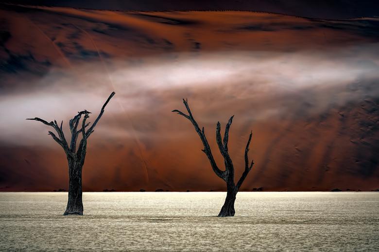 Mist in the Desert