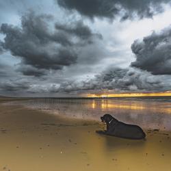 Tussen zonsondergang en storm