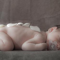 baby Lana