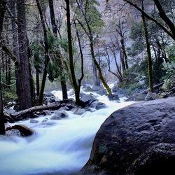 Yosemite National Park / long exposure
