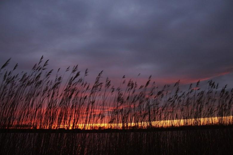 Mooie avondkleuren - Onverwacht kwamen er in eens prachtige luchten tevoorschijn. Dat was even snel de auto in.