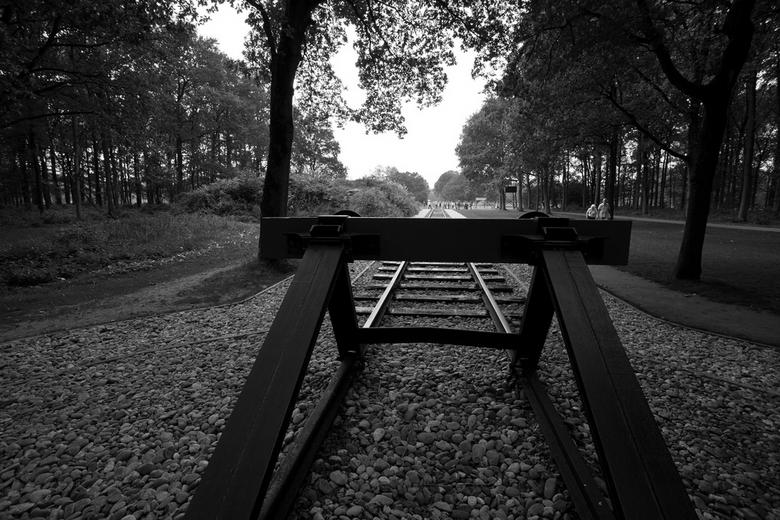 Westerbork 7 -