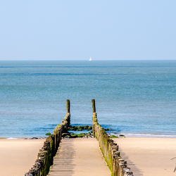Zomer in Zeeland, palenrij op het strand van Westkapelle (panorama)