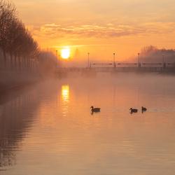 Zonsopkomst boven de Leie in Menen - Belgie