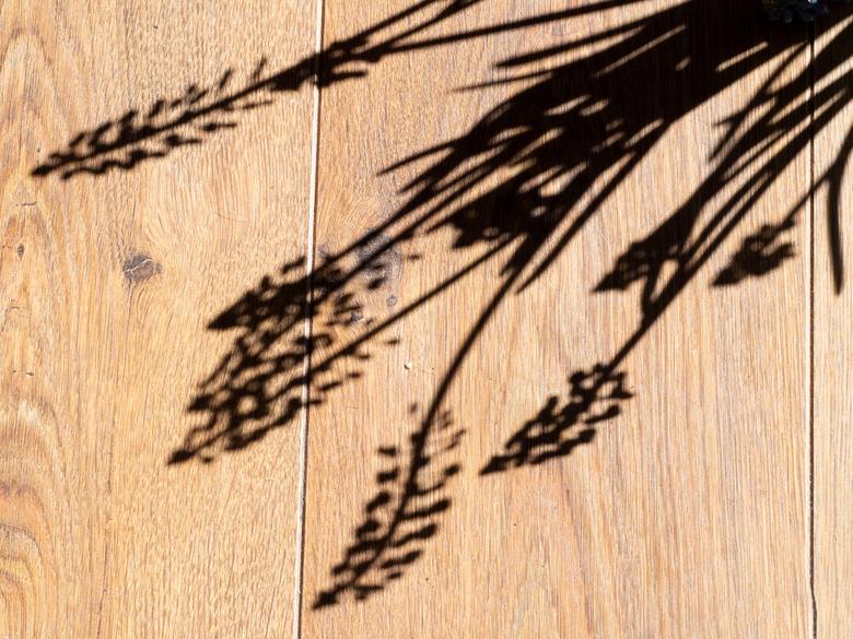 Schaduwen - De tweede opdracht in de Vink Academy fotoweek was: doe iets met schaduwen.