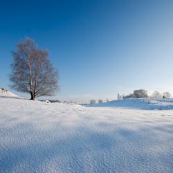 Cool winter