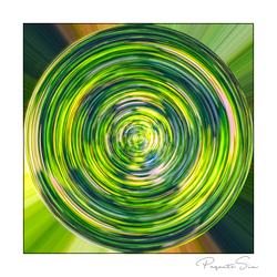 groene cirkel