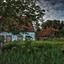 Farm Ollie B Bommel